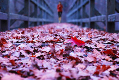 Bridge with runner stock photos