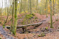 Old wooden bridge in forest leading path way obstacle recreation Stock Photography