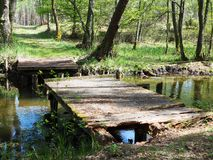 Old wooden bridge with hole stock photo