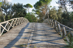 Old wooden bridge over the channel of San Rossore Regional Park, Italy Royalty Free Stock Photo