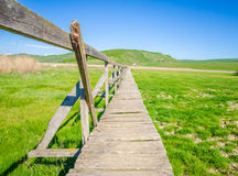 Old wooden bridge over dru marshland Royalty Free Stock Images