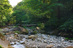 Old wooden bridge over a mountain stream in forest Stock Photo