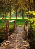 Old wooden bridge over river with colorful trees in autumn park Royalty Free Stock Images
