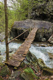 Old wooden bridge over a river in the forest . Stock Photography
