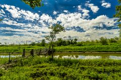 Rural Crossings. A old wooden bridge over a slow flowing river with lush greenery and blue skies and puffy clouds Stock Photography