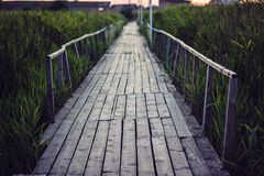 Old wooden bridge over a small shallow river flows into estuary of the Black Sea. Wood bridge leads into the reeds vanishing point. Perspective. Bridge to the Royalty Free Stock Photos
