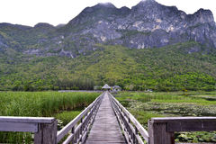 Old wooden bridge path to pavillion and lagoon Royalty Free Stock Images
