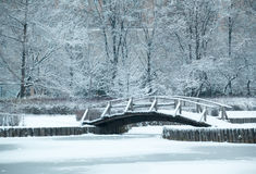 Old wooden bridge under snow, winter landscape. Beautiful winter park view with the pond and wooden bridge Stock Image