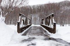 Old wooden bridge Royalty Free Stock Photos