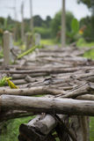 Old wooden bridge, wooden, brown, trees. Royalty Free Stock Photography