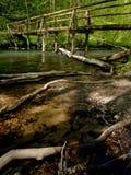 Old wooden bridge in the woods stock photos