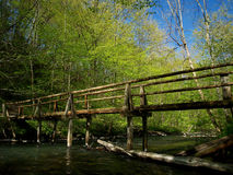 Old wooden bridge in the woods Royalty Free Stock Images