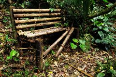 Old wooden broken bench in the jungle, Cordiliera Central. The Cordillera Central English: Central Andes is the highest of the three branches of the Colombian royalty free stock image