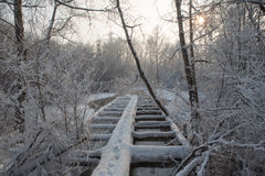 Old wooden broken  footbridge covered with snow Royalty Free Stock Photos