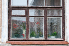 Old wooden brown window on the white facade of the house, outside the window, and vintage lace curtains on the window sill are cla Royalty Free Stock Photography