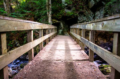 Old Wooden Brudge crossing the River Royalty Free Stock Images