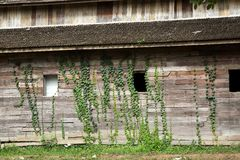 Old wooden building. Royalty Free Stock Photography