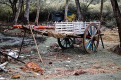 Bullock Cart Parked stock images