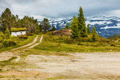 Old wooden cabin in forest Norway Stock Photography