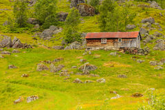 Old wooden cabin in forest Norway Royalty Free Stock Photography