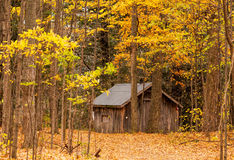 Old wooden cabin Royalty Free Stock Photos