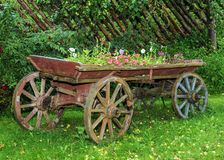 Old wooden cart with flowers Stock Photo