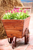 Old Wooden Cart planted flowers. Stock Photography
