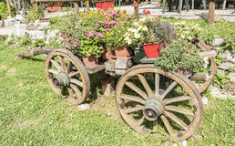 Old wooden cart with pots of flowers Royalty Free Stock Images