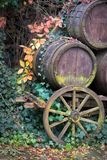 Old wooden cart with wine barrels stock image