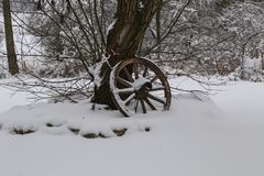 Old wooden cartwheel stands by the tree.  royalty free stock photo