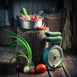 Old wooden cellar with fresh herbs and vegetables. Rustic theme stock photo