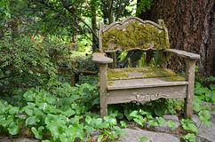 Old wooden chair in garden Stock Photo