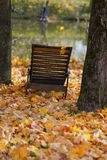 Old wooden chaise longue among fallen autumn leaves on the shore near the water. Autumn, fall season, sad, loneliness. Old wooden chaise longue among fallen stock photography