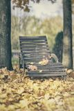 Old wooden chaise lounge among fallen autumn leaves. Atmospheric landscape, relax, nostalgia concept. Old wooden chaise lounge among fallen autumn leaves stock image