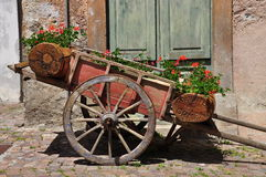 Old wooden chariot with red geraniums Stock Image