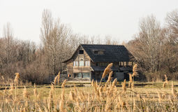 Old wooden cottage in scenic wetland landsape of nature reserve of river mouth Isonzo. Old wooden house in scenic wetland landsape of nature reserve of river Stock Photo