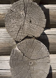 Old wooden cut texture Stock Photo