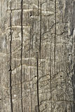 Old wooden damaged surface Royalty Free Stock Image