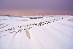 Old wooden dike on frozen North sea Royalty Free Stock Images