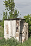 Old wooden dilapidated toilet in a village among the trees. Royalty Free Stock Photos