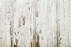 Old wooden door. Background close up Stock Photos