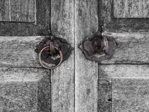 Old wooden door designed decoration elephant stock photography