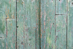 Old Wooden Door Detail. Detail of an old green wooden door with worn out paint and lots of tiny holes Stock Images