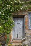 Old Wooden Door Framed by White Roses Royalty Free Stock Image