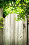 Old wooden door in the garden. Stock Images