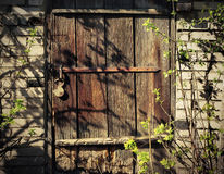 Old wooden door. With hanging lock in a brick house in the garden Stock Image