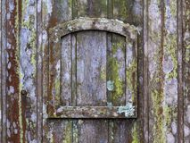 Old wooden door with lichen and moss and a small frame - horizontal background texture Stock Photo