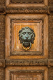 Old wooden door with lion handle Royalty Free Stock Photo
