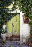 Old Wooden Door. In a mediterranean house surrounded by ivy Royalty Free Stock Images