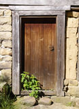 Old wooden door with nettle Stock Photography